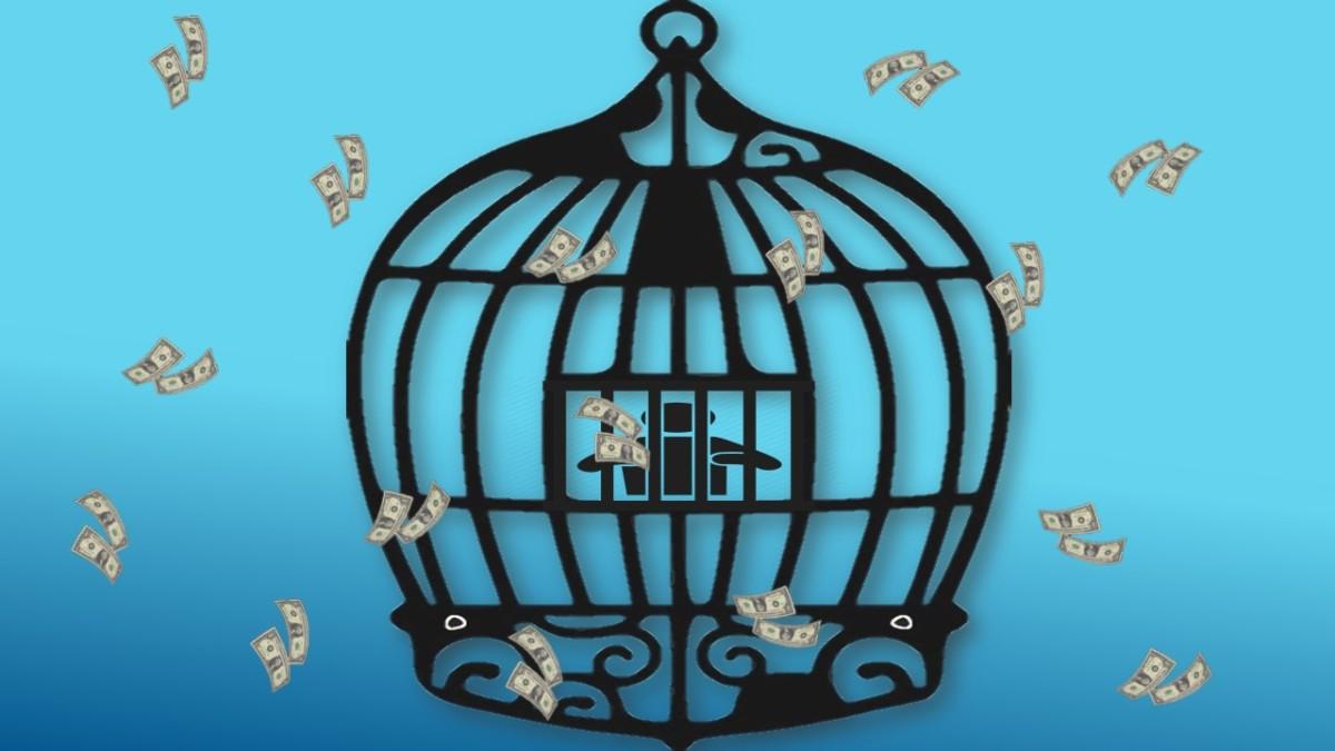 cash parrot